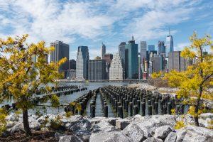 Downtown Manhattan Skyline - Brooklyn Bridge Park | Killer Joe Photography